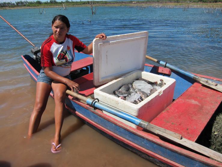 Cercamento das águas brasileiras ameaça pesca artesanal