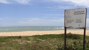 Identificação da área de desova de tartarugas marinhas na Praia do Além em Anchieta.