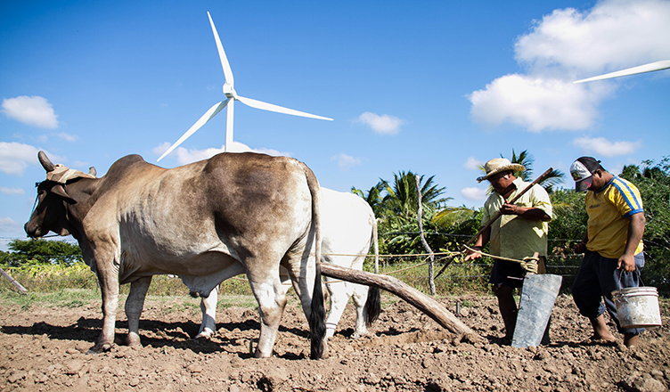 The Dark Side of Clean Energy in Mexico