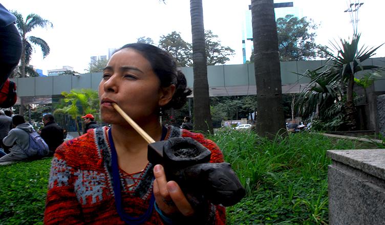 Una nación indígena en el seno más industrializado de América del Sur
