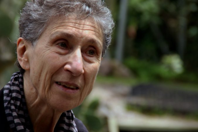Sylvia Federici: Primitive Accumulation of Capital and Violence Against Women