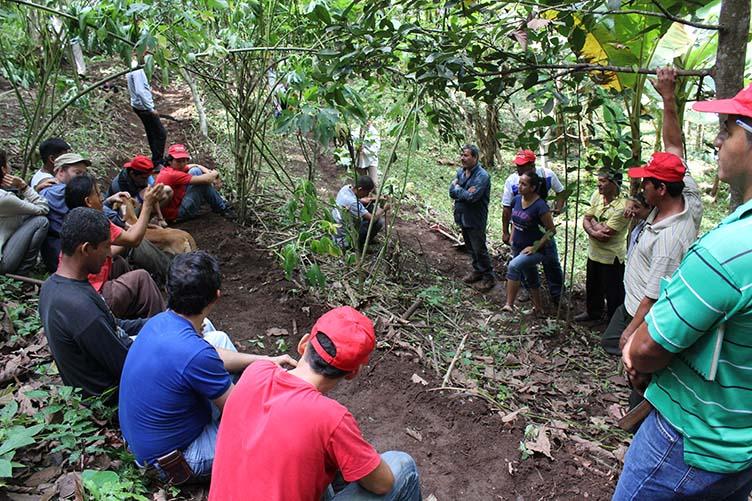 El paisaje agrario en Ecuador y la resistencia de los campesinos
