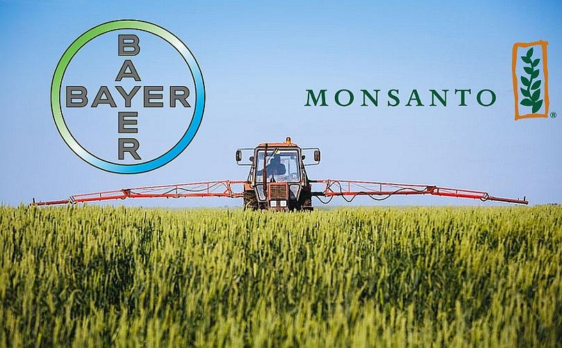 Bayer compra multinacional dueña del 90% de semillas trangenicas en el mundo