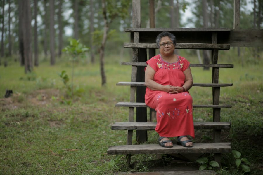 Access to land for indigenous women: an essential condition for eradicating gender violence
