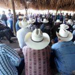 Mexico Moves Ahead With Controversial Pipeline Through Indigenous Land, Despite Moratorium