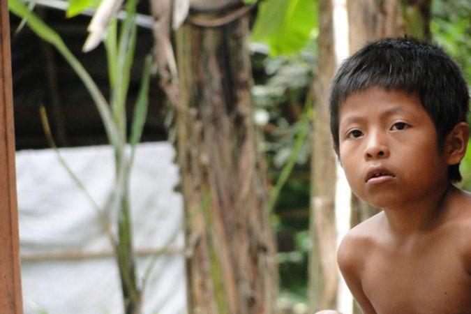 ESPECIAL: Consulta indígena legaliza despojo de los pueblos