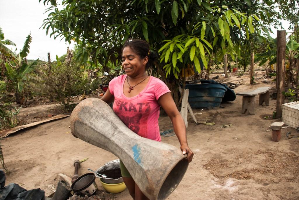 Neocolonialismo verde, rebeldía negra en Brasil
