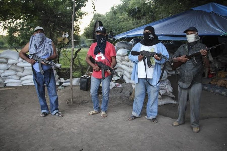 Michoacan and the Economics of Crime