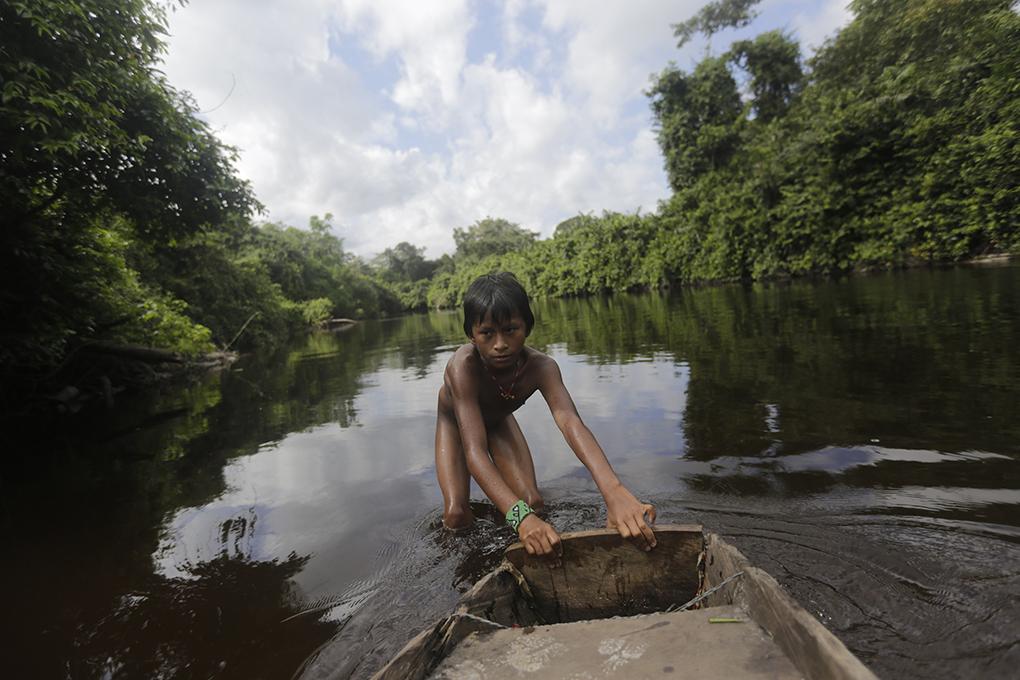 Brasil: Indigenas crean mecanismos de estrategias autónomas de resistencia tras la tala de sus bosques y el asedio del Estado