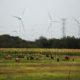 EEUU prepara mercado de carbono en México y resto de Latinoamérica