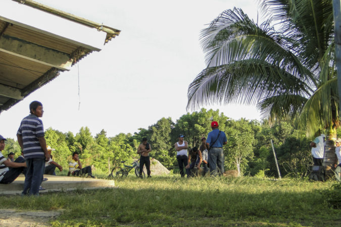 Guatemala: el trabajo esclavo detrás de la palma aceitera