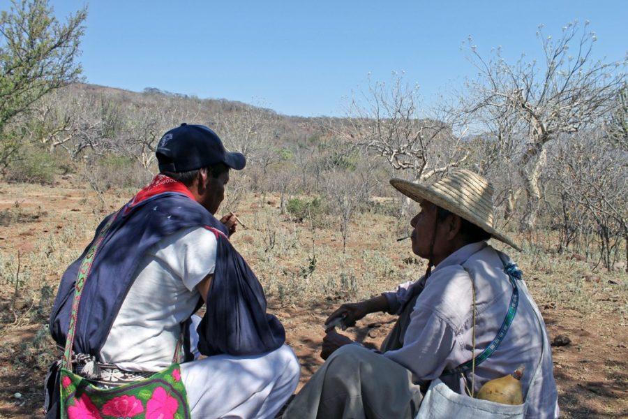 México: Secuestro de 2 indígenas en Jalisco busca concretar despojo de tierras comunales
