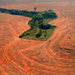 Aereal view of an area deforestated by soybean farmers in Novo Progreso, Para, Brazil, in this September, 2004 file photo. Deforestation in the Amazon rain forest in 2004 was the second worst on record, figures released by the Brazilian government showed. Satellite photos and data showed that ranchers, soybean farmers and loggers burned and cut down a near-record area of 26,130 square kilometers (10,088 square miles) of rain forest in the 12 months ending in August 2004, the Brazilian Environmental Ministry said Wednesday.The destruction was nearly 6 percent higher than in the same period the year before, when 24,600 square kilometers (9,500 square miles) were destroyed. (AP Photo/Alberto Cesar-GREENPEACE/HO)