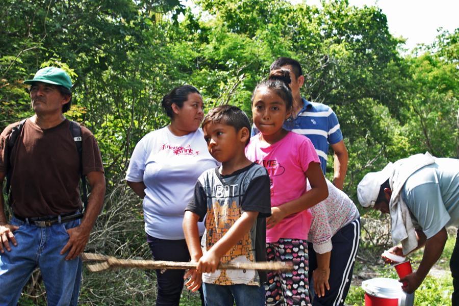 México: Imponen mega granja porcina, soya transgénica y economía verde en Yucatán
