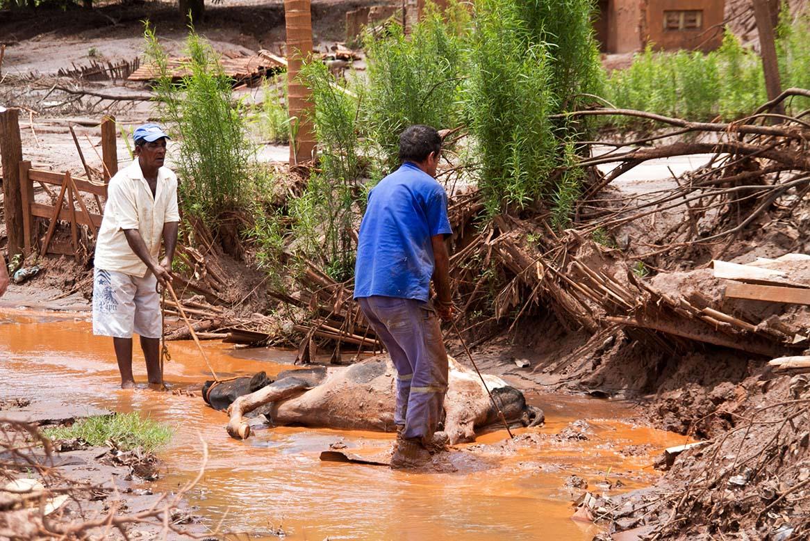 75% de los ríos de México están contaminados, afirma investigador de la UNAM