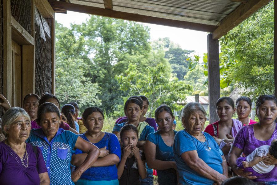 Guatemala: A conservação perpetua o saque das florestas