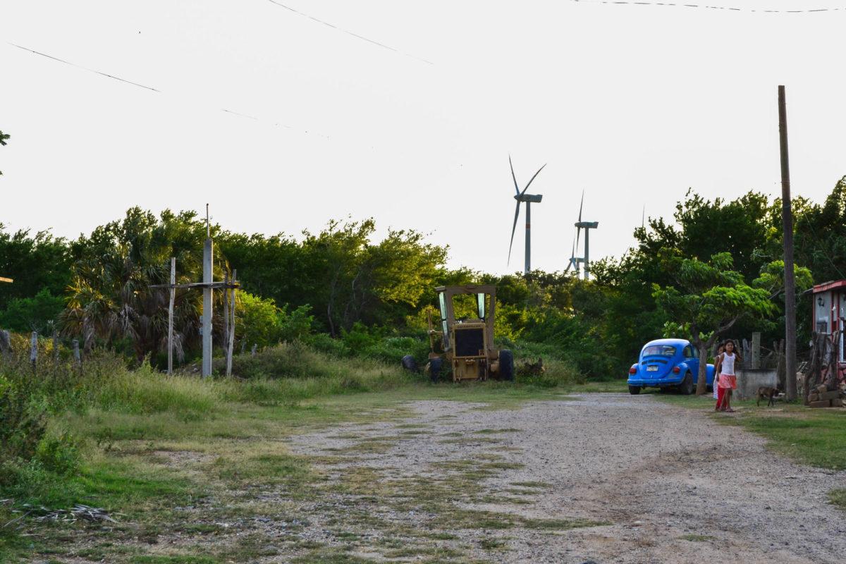 Estudios demuestran que parques eólicos aumentan temperaturas en zonas donde son instalados