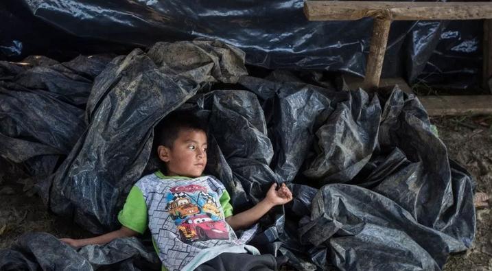 Desplazamiento forzado interno se agudiza por violencia y megaproyectos en México