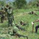 Después del acuerdo de paz, incrementa violencia contra defensores del territorio en Colombia