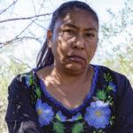 """Los """"Ventajosos"""" beneficios de Sempra Energy en México"""