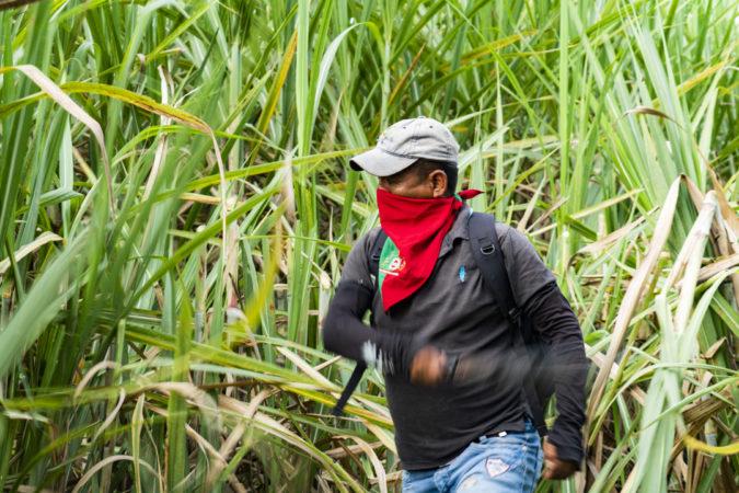 Colombia: Indígenas recuperan tierras despojadas por la industria de la caña