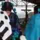 Se intensifica hostigamiento hacia pueblos indígenas en el sur de México