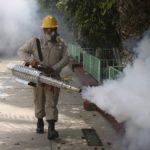 Se multiplican casos de dengue en México, las fumigaciones son ineficientes y dañinas