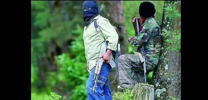 Continúa ataques paramilitares en comunidades de Chiapas - Avispa Midia